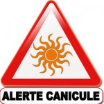 picto_canicule