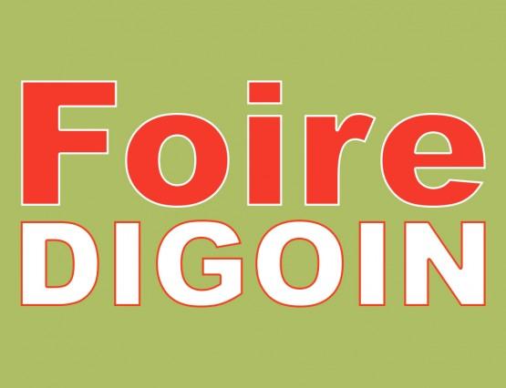 foire_digoin_une